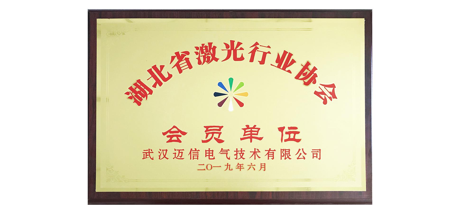 迈信电气受邀加入湖北省激光行业协会